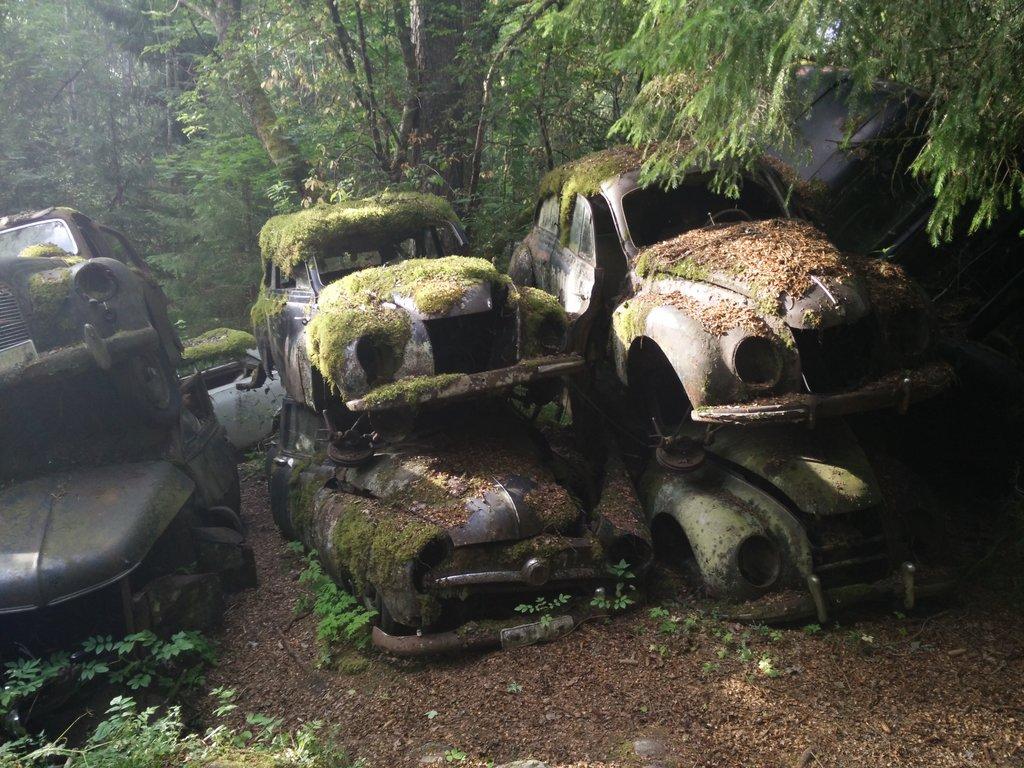 Pohrebisko áut