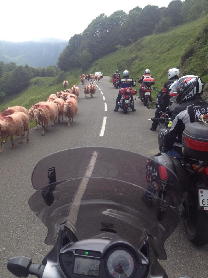 Typická pyrenejská krajina