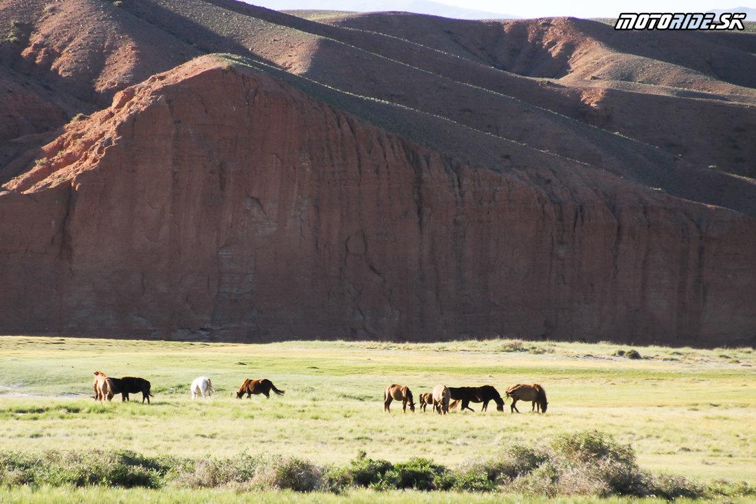 Endurotrip Mongolia 2018 – GOBI DESERT