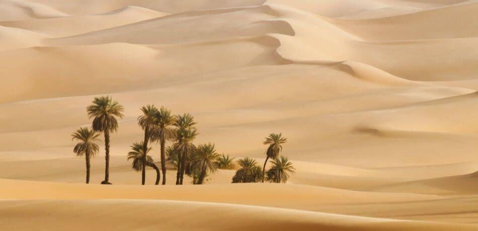 Dakar 2020 bude pravdepodobne v Saudskej Arábii