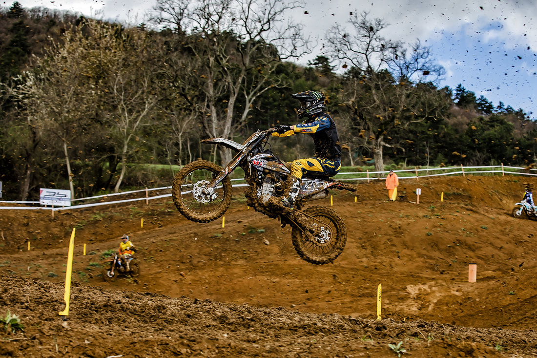 Neugebauer MX OPEN