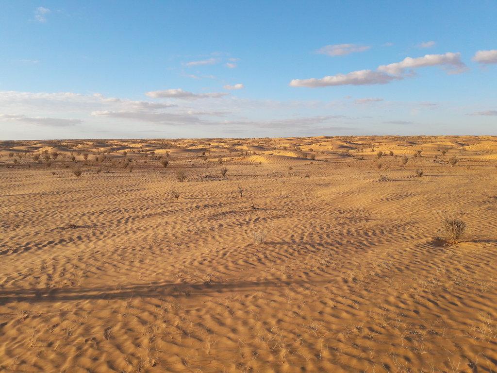 To the Dunes and back III - večerná púsť