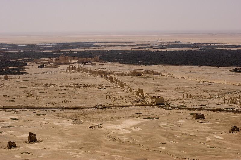 0183 Palmyra
