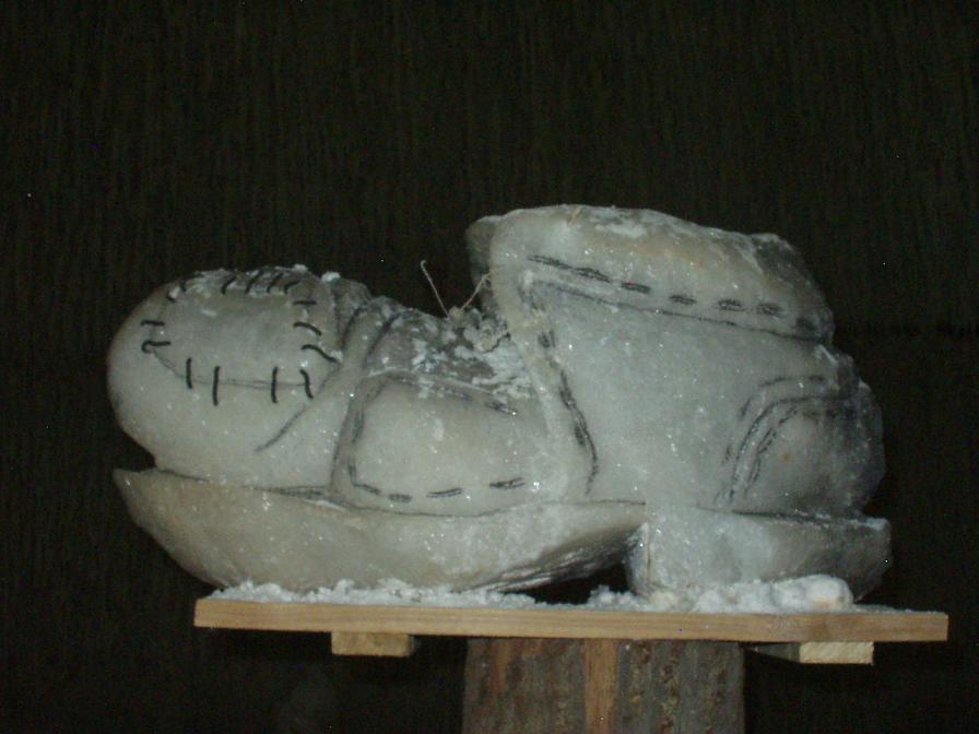 papuča velká asi 1m