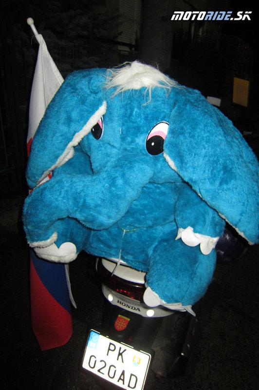 Náš kamoš Lefant z Horných Elefantoviec :)