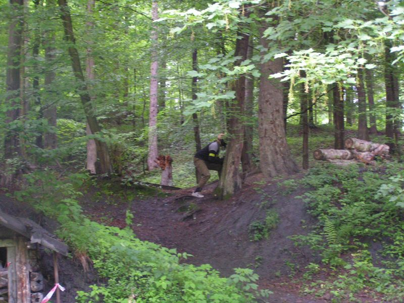 ...Saki v lese...