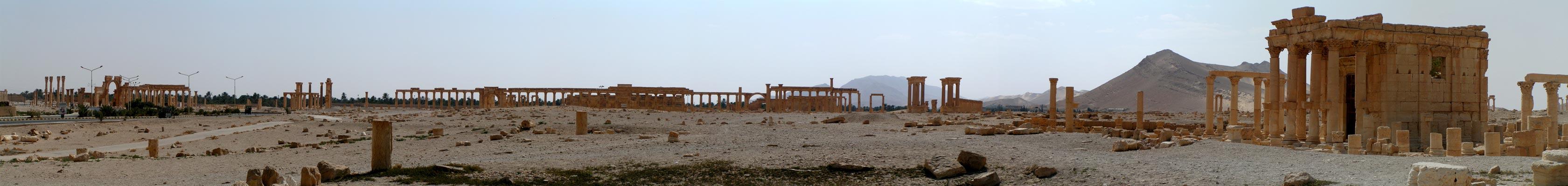 Panoráma Palmyra