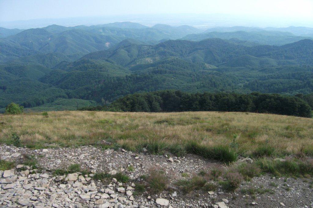 Pohľad z Pietroasy - Pietroasa 1200 m n.m., výjazd, Rumunsko