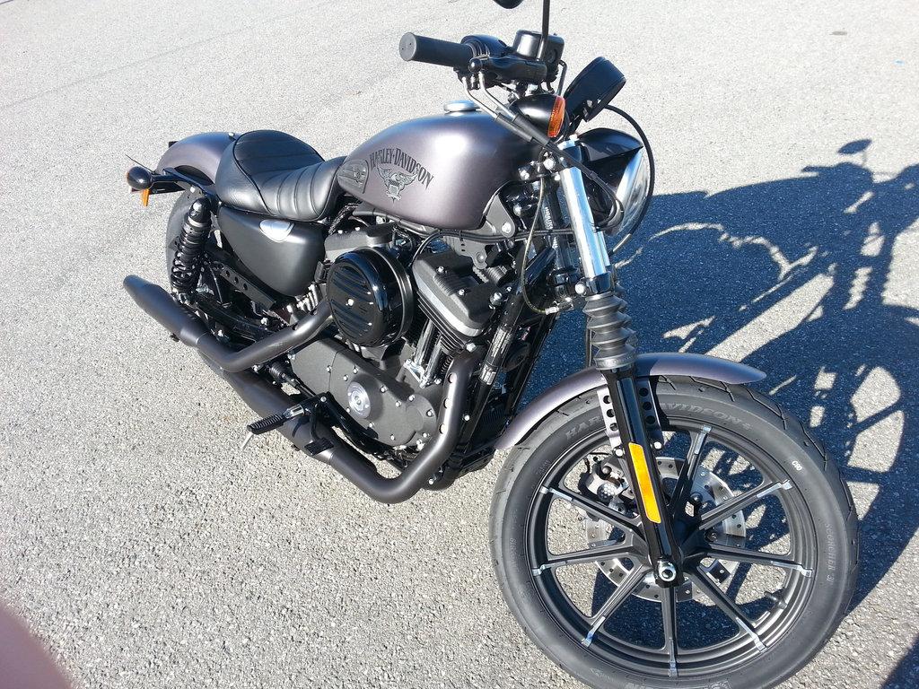 Harley-Davidson Iron 883, 2016