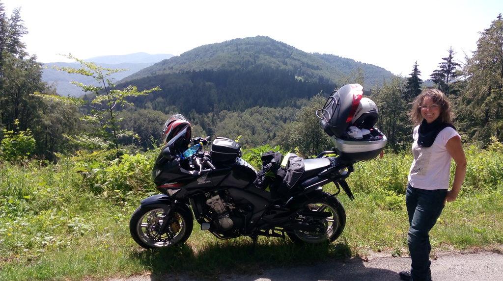 Dolina medzi Čičmanmi a Zliechovom
